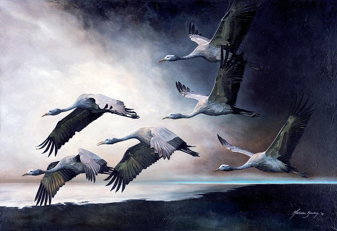 Into The Light - Blue Cranes