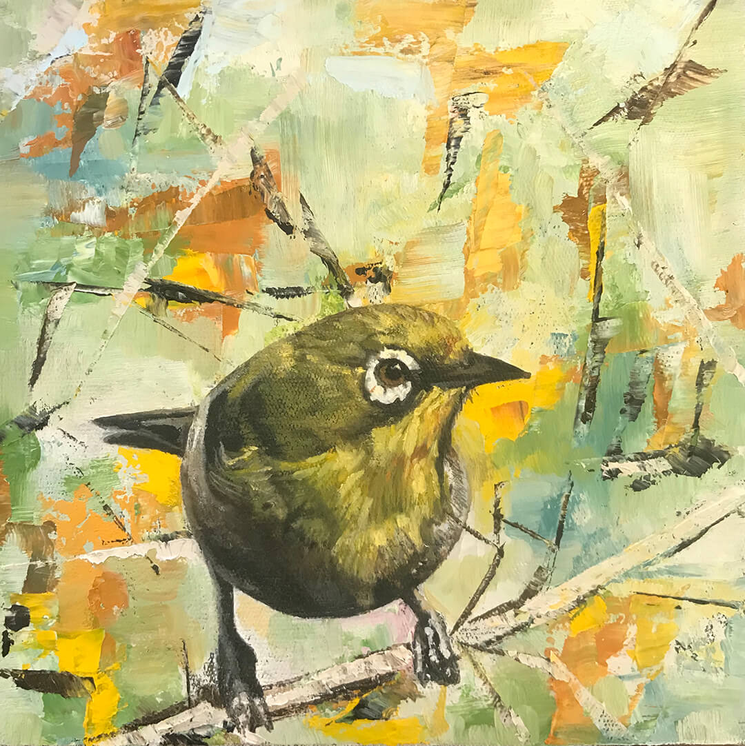 Cape White-Eye oil painting by Malcolm Bowling