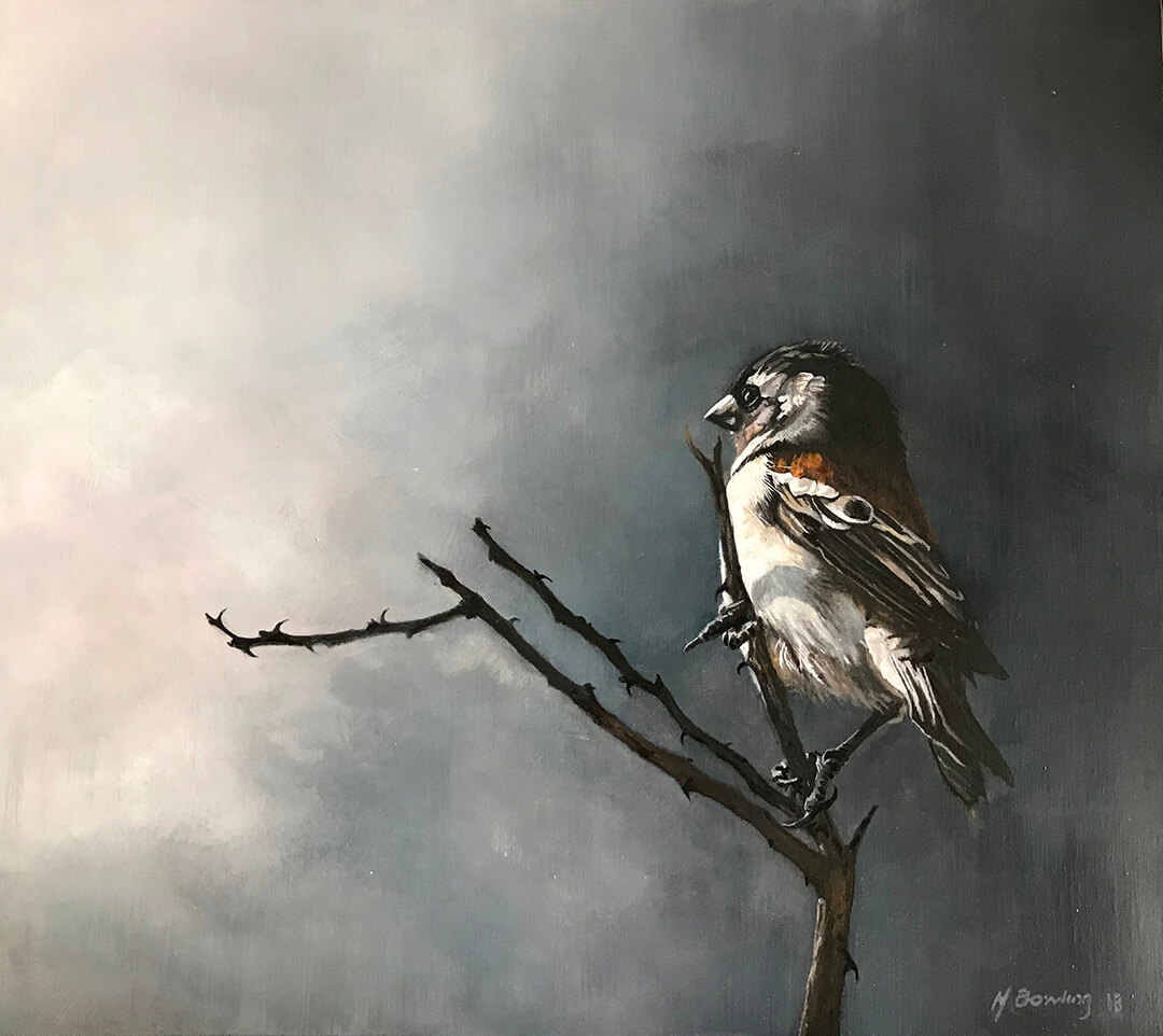 Sparrow oil painting by Malcolm Bowling
