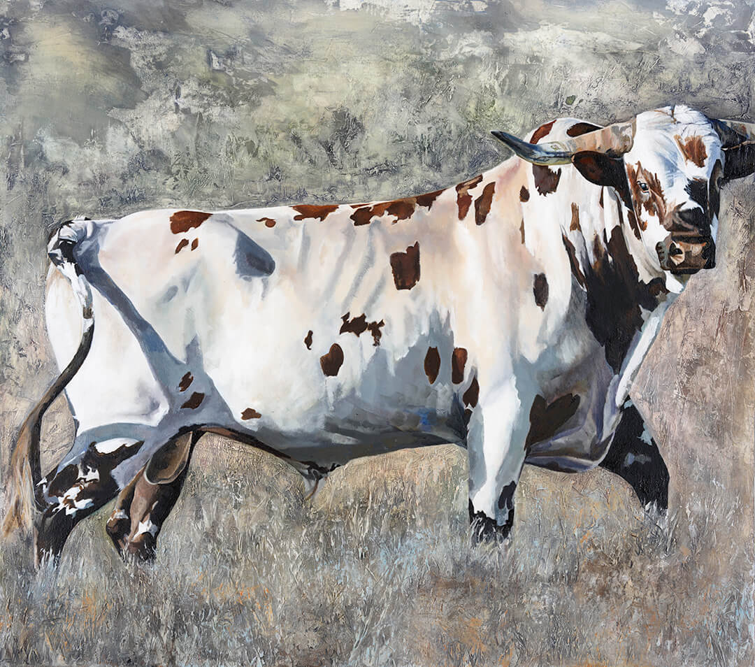 Nguni Bull on Texture oil painting by Malcolm Bowling
