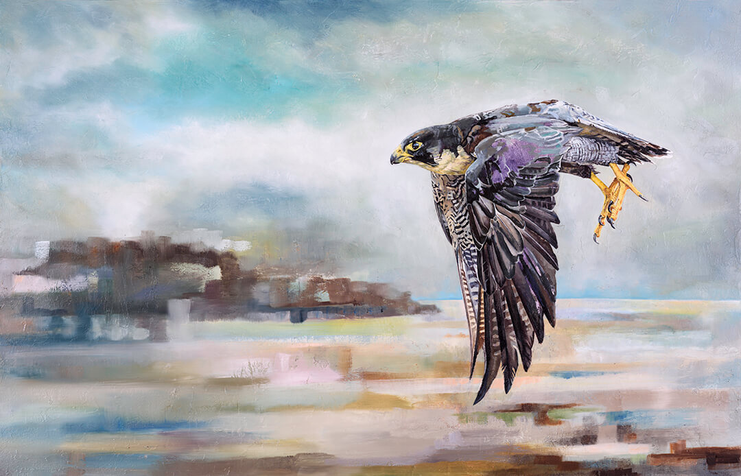 Peregrine oil painting by Malcolm Bowling