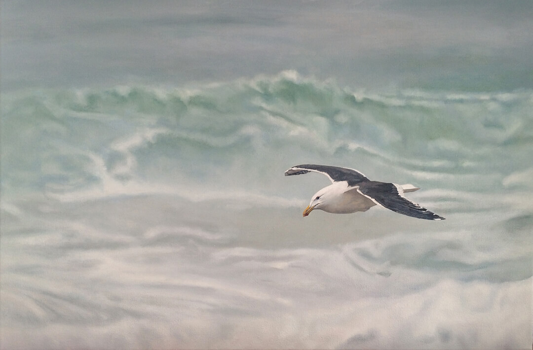 Suspended Seagull oil painting by Malcolm Bowling