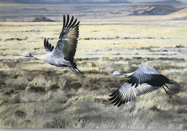 Indwe - Together we fly canvas print by Malcolm Bowling