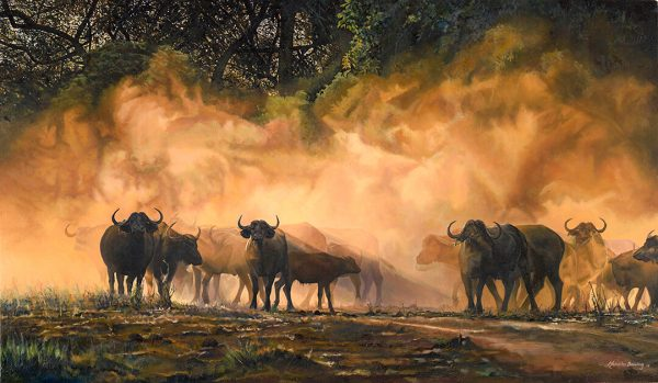 Mana Buffalo canvas print by Malcolm Bowling