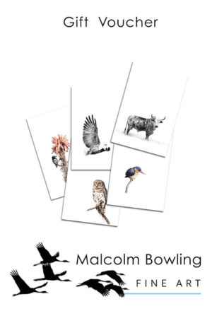 Malcolm Bowling gift voucher